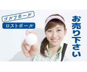 レアレアゴルフの画像