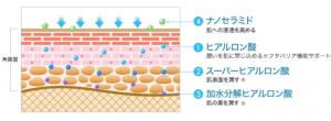 トリプルヒアルロン酸の画像