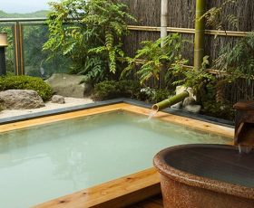 岳温泉 画像